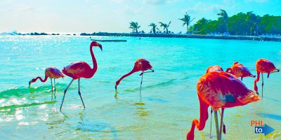 Cheap flights from PHL to AUA Aruba, Aruba